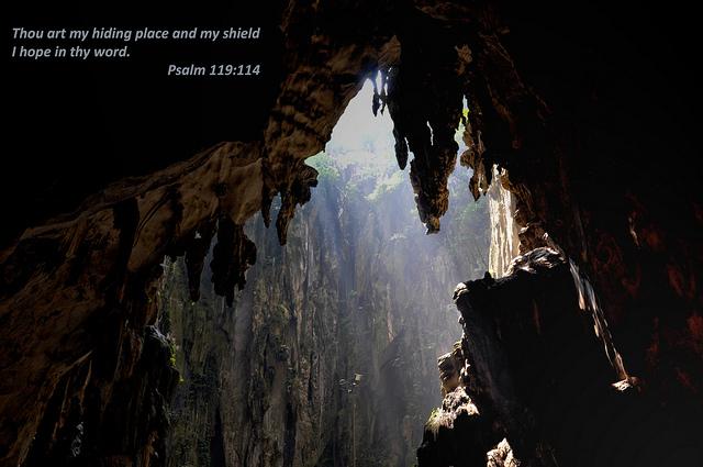 Psalm119-114