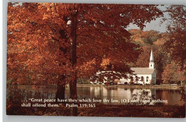 Psalm119-165