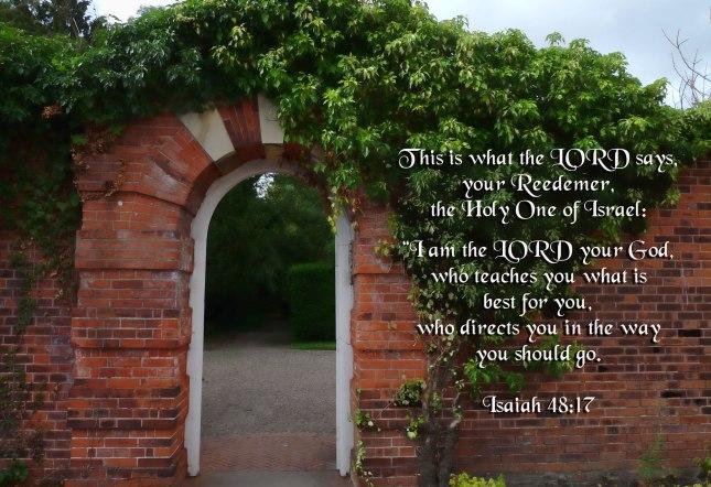 Isaiah48-17