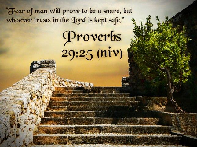 Proverbs29-25