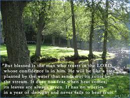 Jeremiah17-7-8