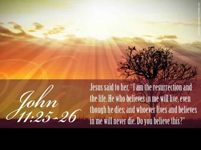 John11-25