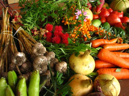Ecologically grown vegetables. Methodism founder John Wesley stressed the importance of high fiber, diabetic-friendly foods for good health.