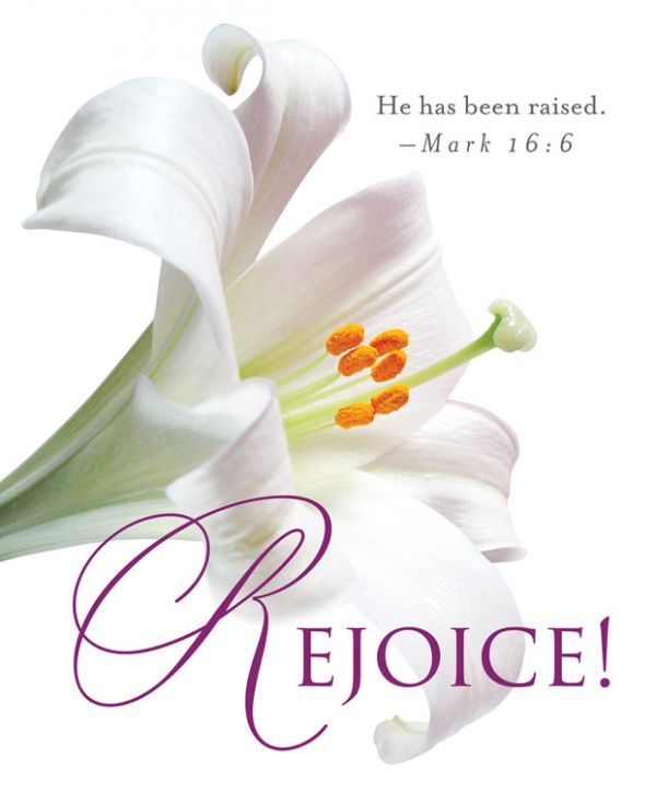 easter_lilies_rejoice
